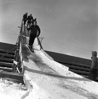 Skiing Down the Bob-Sled Run