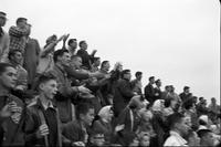 Cheering Fans