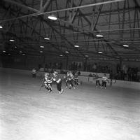 Women's Hockey Game