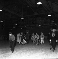 Costumed Skaters